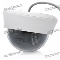 P2P 300KP CMOS Network Surveillance ID Camera with 22-LED IR Night Vision